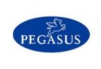 Pegasus/TGB